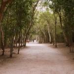 coba riviera maya