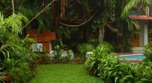 jardin Eco-hotel El Rey del Caribe Cancún