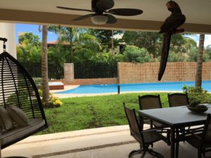Luxury Poolside Condo
