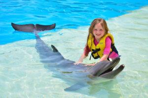 nado con delfines actividades en isla mujeres