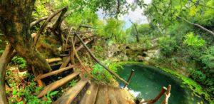 Cenote Zapote Puerto Morelos