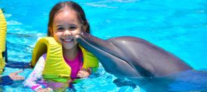 delfines cancun
