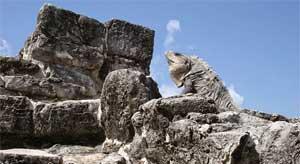 zonas arqueologicas ciudad de cancun